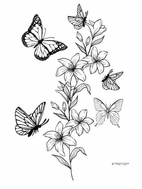 Free Printable Butterfly Coloring Pages And Templates
